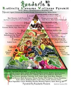 raw food pyramid minus the breads and legumes...