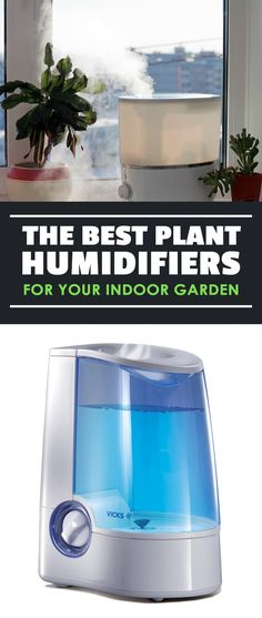 Raising the humidity in your indoor garden can be a chore...unless you use a plant humidifier. Learn how to select the best one and use it in your garden. via @epicgardening