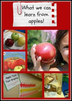 Let's Learn S'more loves this! PreK+K Sharing: What we Learn from Apples: science, math and literacy! Preschool Apple Theme, Apple Activities, Fall Preschool, Preschool Themes, Preschool Science, Daycare Themes, Preschool Apples, Educational Activities, Learning Activities