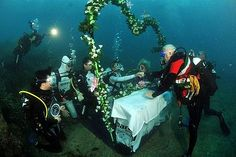 This amazing and unique wedding was marked by the presence of 261 divers who dared to set a world record of the largest underwater wedding till date. Both, the bride Francesca Colombi and the groom Giampiero Giannoccaro performed their wedding rituals underwater at the Morocone Beach at Capoliveri on the Elba Island of Italy on June 12, 2010.