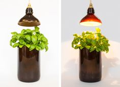 UTREM LUX: Recycled Lighting