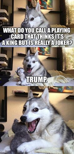 Bad Pun Dog | WHAT DO YOU CALL A PLAYING CARD THAT THINKS IT'S A KING BUT IS REALLY A JOKER? TRUMP. | image tagged in memes,bad pun dog | made w/ Imgflip meme maker