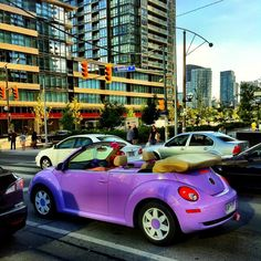 When you do something that makes you smile, like riding in a bright purple VW bug, you make others smile! Smiling is contagious and you'll share your lighthearted mood with someone who might need it!