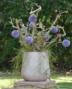Betonnen pot opgemaakt met naturel decoratietakken en allium bollen( kunst bloemen) dit alles is verkrijgbaar op webshop www.decoratietakken.nl