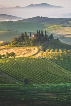 i-long-to-travel-the-world: stayfr-sh: The Tuscan Dream