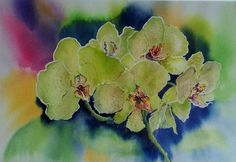 Orchideen Aquarell