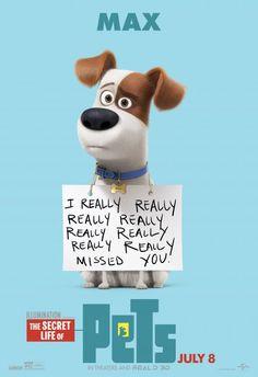 31 Ideas De La Vida Secreta De Tus Mascotas La Vida Secreta De Tus Mascotas La Vida Secreta Mascotas