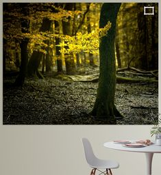 Nederlands Herfstbos Outdoor Furniture, Outdoor Decor, Park, Canvas, Yellow, Prints, Poster, Tela, Parks