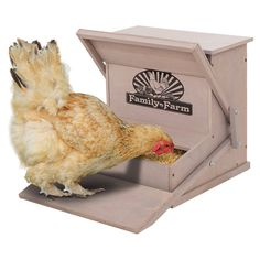 From urban backyards to country retreats, this chicken raising essential transforms your home into an organic haven.  Product: Chicken feederConstruction Material: WoodColor: TaupeFeatures:  Keeps feed clean and freshPrevents food from attracting wild birds and rodents Weather resistant finish protects the feeder from water and sun damage Dimensions: 3.75 H x 18.75 W x 21.375 D