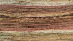 firewood-texture - firewood-texture.jpg