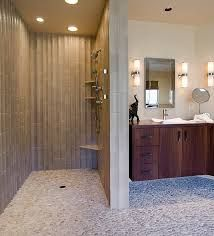 shower without door - Google Search