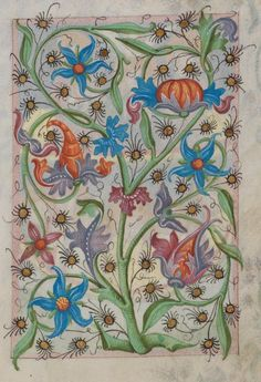 "heaveninawildflower: ""Floral decorative page from a Medieval Manuscript 1486 (Waldburg-Gebetbuch, WLB Stuttgart, Cod. Medieval Books, Medieval Manuscript, Medieval Art, Illuminated Letters, Illuminated Manuscript, Illumination Art, Art Ancien, Fancy Letters, Book Of Kells"
