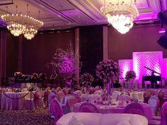 Purple Theme and Decor