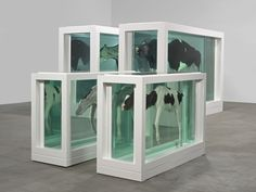 Contemporary Art Focus: Damien Hirst > conceptual artist, modern artist and visionary galore - here's why Damien Hirst remains one of the most inspiring artists of this era. Laura Lee, Modern Artists, Contemporary Artists, Damien Hirst Art, Cindy Sherman, New Media Art, Artistic Installation, Jeff Koons, English Artists