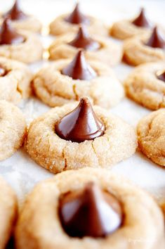 What better day to make the classic Peanut Butter Blossoms than on National Peanut Butter Lovers Day! Easy and a fun treat for the whole family! Chocolate Chip Shortbread Cookies, Chewy Peanut Butter Cookies, Toffee Cookies, Peanut Butter Desserts, Chocolate Marshmallows, Spice Cookies, Yummy Cookies, Marshmallow Cookies, Cookies Soft