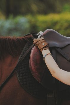 Leather combined with the aroma of a sweaty horse, is one of the sweetest smells in the world. <3 ~ETS