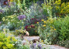 The Daily Telegraph Garden - Chelsea 2011 Gravel Path, Garden Inspiration, Garden Ideas, Mediterranean Garden, Chelsea Flower Show, Topiary, Flower Beds, Perennials, Grass