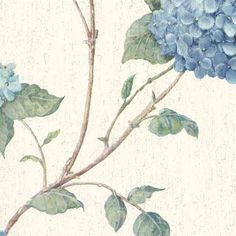 Blue Hydrangea Blossom Wallpaper - Coastal Nautical Wallpaper