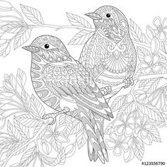 Vector: Stylized two sparrows sitting on blooming tree branch. Freehand sketch for adult anti stress coloring book page with doodle and zentangle elements.
