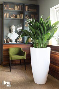 Fleur Ami spathiphyllum planter pots patios and living rooms