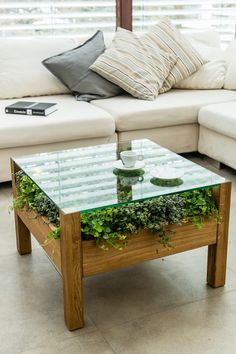Different Coffee Table Designs Get a Nice Looking Cheap Coffee Table to Spice Up Your Space 16 cheap coffee designs nice space spice table # Home Decor Furniture, Diy Home Decor, Furniture Design, Diy Coffee Table, Coffee Table Design, Coffee Cups, Garden Coffee Table, Coffee Beans, House Plants Decor