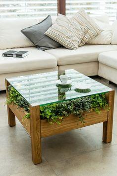 Zielony stolik, stolik z roślinami, żywy stolik, natura we wnętrzach, zieleń we wnętrzach. Zobacz więcej na: https://www.homify.pl/katalogi-inspiracji/20822/dzien-swietego-patryka-zielen-we-wnetrzach