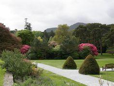 Muckross House Killarney–Gardens of Ireland – Killarney Attractions - Killarney National Park –Muckross Park