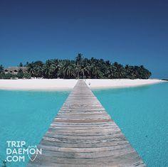 #trip #tripdaemon #travel #amazing #gopro #dji #canon #nikon #nature #view