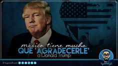 México tiene mucho que 'AGRADECERLE' a Donald Trump