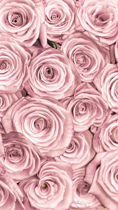 Backgrounds backgrounds link=>website with many lovely images. rose gold wallpaper for iphone 7 plus wallpaper rocket Rose Gold Marble Wallpaper, Gold Wallpaper Background, Flower Wallpaper, Pattern Wallpaper, Rose Background, Pink And Gold Wallpaper, Pink And Gold Background, Beautiful Wallpaper, Background Pictures