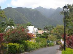 """""""Entre-Deux"""" in Reunion island (home)"""