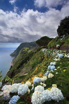 Ponta do Sossêgo - São Miguel - Açores  - PORTUGAL