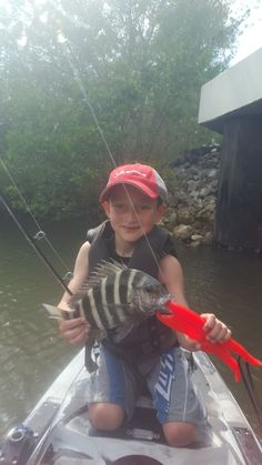 sheepshead fishing #sheepshead