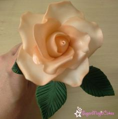 Peach rose made from gumpaste
