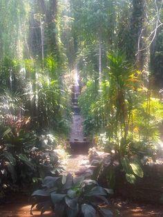 Jardim Botanico, rio