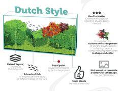 Dutch Aquascaping Style by TheAquariumGuide.com