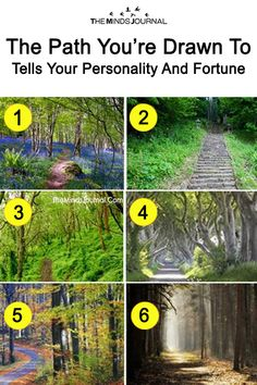 The Path you choose reveals details about your subconscious, and the path you're on. Fun Test: The Path You're Drawn To Tells Your Personality And Fortune Psychology Programs, Psychology Facts, Psychology Symbol, True Colors Personality, Personality Tests, Personality Quotes, Personality Psychology, Spiritual Test, Spiritual Practices