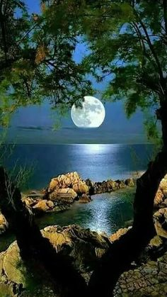 Ideas photography nature beautiful landscapes for 2019 Beautiful Moon, Beautiful World, Beautiful Places, Beautiful Scenery, Beautiful People, Landscape Photography, Nature Photography, Photography Classes, Camping Photography