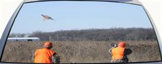 Pheasant Hunting shooting at a pheasant in flight Rear Window Graphic Mural