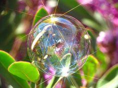 35 Stunning Examples Of Soap Bubble Photography Dew Drops, Rain Drops, Photografy Art, Bubble Balloons, Rainbow Bubbles, Blowing Bubbles, Creative Visualization, Soap Bubbles, Water Droplets