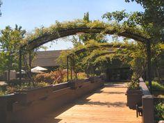 J Vineyards and Winery - Healdsburg, California