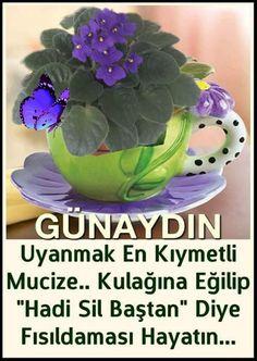 Günaydın mesajları , En güzel Günaydın resimleri, Günaydın resimleri paylaş , sevgiliye Günaydın... Messages, Plants, Flora, Plant, Planting