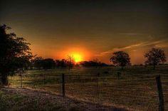 Beautiful  Texas