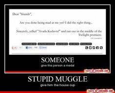 The Potterverse has some of the most dedicated fans.
