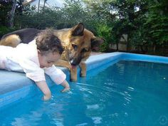 Please don't jump in..but if you do, I will protect you.