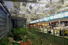 Terminal 3 in Changi International Airport, Singapore