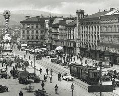 Linz an der Straßenbahn: Vor 135 Jahren erteilte das Handelsministerium die Konzession zum Betrieb einer Pferdestraßenbahn – Seit 1897 fährt die Tram elektrisch und befördert nun 59,4 Millionen Menschen im Jahr. Mehr dazu hier: http://www.nachrichten.at/nachrichten/150jahre/tagespost/Urzeit-der-Linzer-Tramway;art171761,1688323 (Bild: Lentia Verlag)