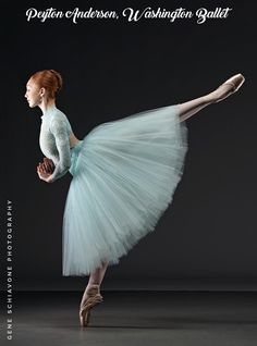 Professional Style Romantic Tutu - Made to Order - Adult XXS