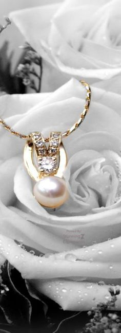 Pearls in Fashion Luxury Lifestyle Fashion, Chanel, Pearl And Lace, Pearl Cream, White Fashion, Pearl Jewelry, Jewelry Accessories, White Gold, Bling