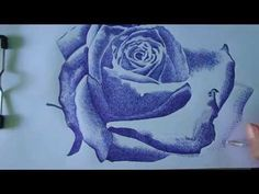 How to draw Rose with Ballpoint Pen easy by Tialer Tran - YouTube
